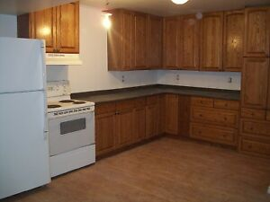TWO BEDROOM BASEMENT SUITE - available immediately