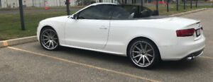 2010 Audi S5 Premium Convertible - +400HP | Low km | Exc Cond