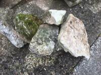 Rockery Stones of varying sizes .13 large approx 50cm long and 12 smaller up to 30cm