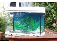Tetra 59L Tropical Fish Tank & Accessories