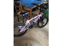 Amazing condition girls rhino bike pink!