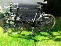 raleigh pursuit classic 80's race bike shed find :-)