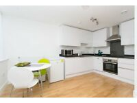 *AVAILABLE NOW* Mordern One Bedroom Apartment Fully Furnished - SE10