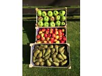 Fresh Eating & Cooking apples,Pears&Plums