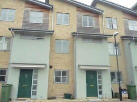 2 Mature tenants needed for houseshare near GCHQ