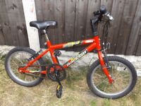 "Childs Bike - 14"" inch wheel Rayleigh Gekko Bicycle"