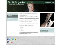 Expert Electric/Acoustic guitar tuition at very reasonable rates