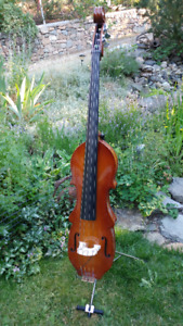 Eminence Acoustic Electric 3/4 Upright Bass with 200 Watt Amp