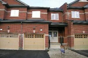 Executive Town Home for Rent in Brampton