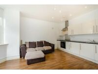 1 Double bedroom flat - Oval