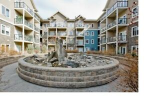 Great Condo Close to White Ave and UOA