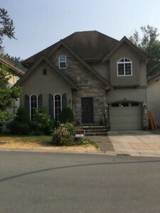 Gorgeous Renovated Open Concept Home with Yard