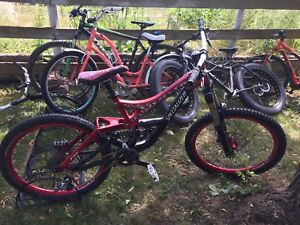 Specialized demo 7