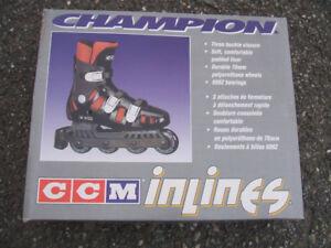 patin a roue aligné avec les accessoires