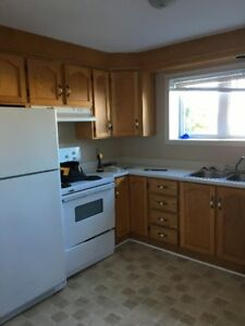 Beautiful Apartment for Rent August 1st near Village Mall