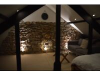 Beautiful attic room to rent (7 X 5m) in Yealmpton for £450 per month bills included 3rd Sep
