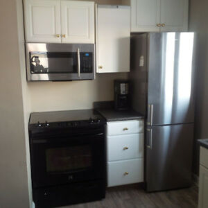beautiful, renovated one bedroom furnished Avail Jan 6