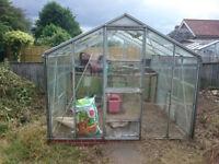 Greenhouse 8x8