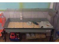 Indoor rabbit cage with stand