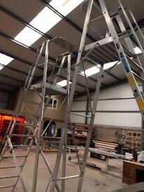 Zarges 10 Rung Platform ladder