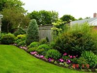 Experienced and Meticulous Landscaping & Gardening Services