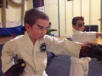 Banstead Martial Arts - Banstead TaeKwon-Do - New Banstead Classes at Banstead Prep School