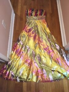 Beautiful Formal Gown (sz 10)