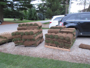 SOD for sale.