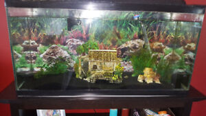 35 gallon fish tank with all accessories! best offer