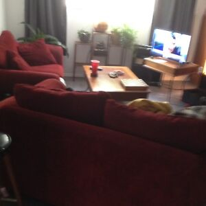 Roommate Needed $550/mo incl. utils.  - Armstrong