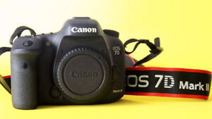 Canon 7D2、Canon 28-300mm lens, L series.