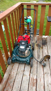 Lawnmower and whipper combo