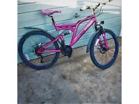 Dunlop soprts Singrturs Unisex Bike