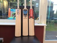 Cricket Bats - Bradbury, B3 Crown, BAS (GN Stickers)
