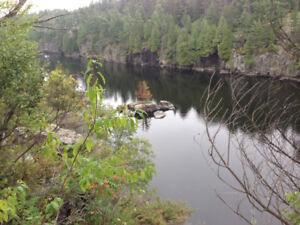 4 nicely treed building lots on beautiful French River.
