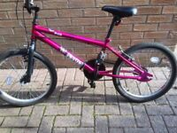 BMX Bike Indi Fierce Model