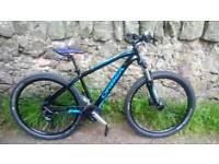 Superb 27.5er Orbea mountain bike