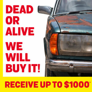 DEAD OR ALIVE, WE WILL BUY CASH!