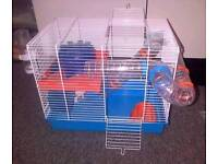 Hamster Cage Exeter