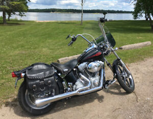 2002 HD Softail Standard with lots of extras