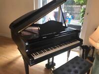 Baby Grand Piano (Steinmayer)