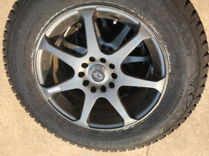 Stud Tires!!!  Get your stud tires here!!!