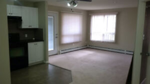 Condo 2min to LRT for rent with two bedroom/two bathroom