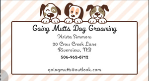 Going Mutts Dog Grooming in Riverview