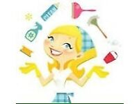 Domestic cleaner and offices needed