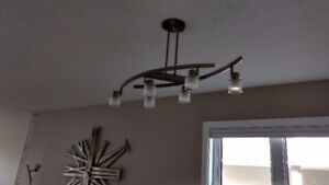 Stainless Light Fixture (6 lamp)