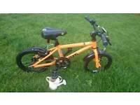 Orange Frog 43 Children's Bike