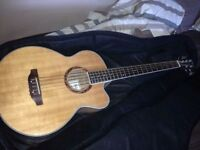 5 String Acoustic Bass