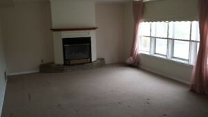 Walk Out Basement Apartment for Rent at Bellamy and Lawrence