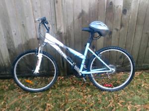 Gateway Revolution Bicycle + Aireatrike Bike Pump